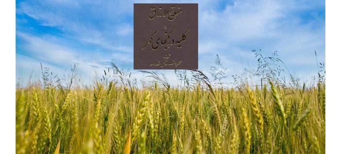 مبانی کشاورزی بومی – مفتاح اول
