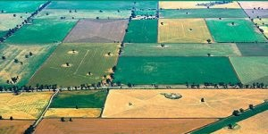 مبانی کشاورزی بومی – مفتاح یک