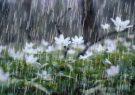 رابطه مستقیم کشاورزی و دامداری طبیعی با نزول باران