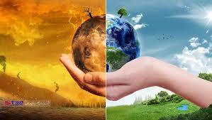 گیاهان ناجی هوا