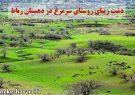 دشت زیبای روستای سرمرغ در دهستان رباط