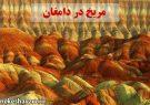مریخ در دامغان ایران!