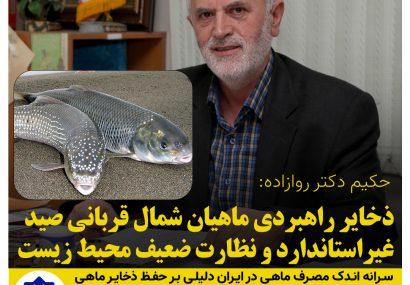 ذخایر راهبردی ماهیان شمال قربانی صید غیراستاندارد و نظارت ضعیف محیط زیست