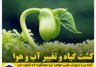 کشت گیاه و تغییر آب و هوا